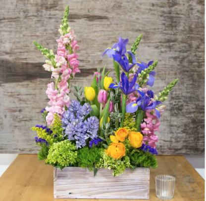 Spring flowers Marysville