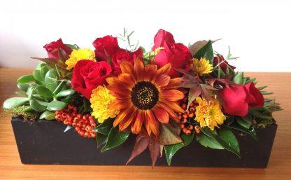 Fall flowers Marysville WA