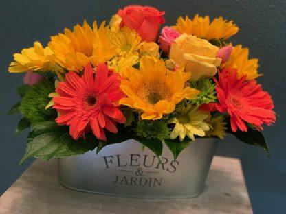 Marysville Flowers   The Plant Girl Florist